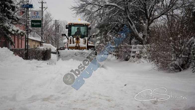 iarna Buzau5