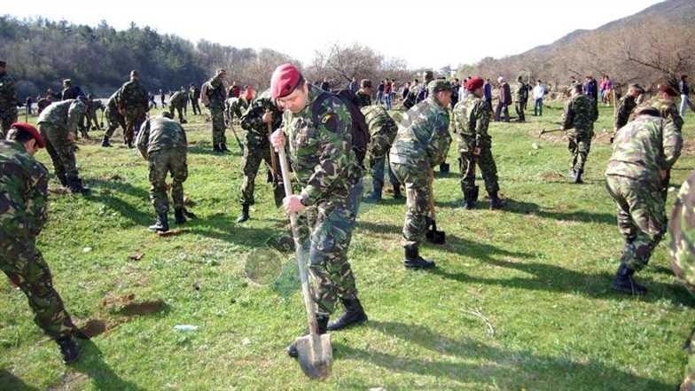 Impadurire militari Beceni-2