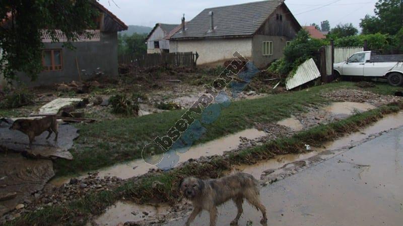 inundatii Tisau