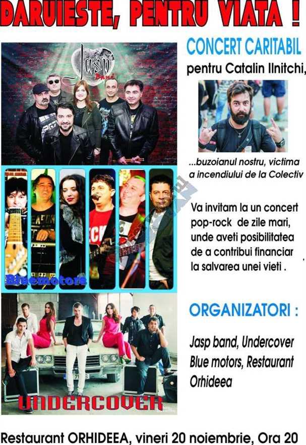Concert Ilnitchi