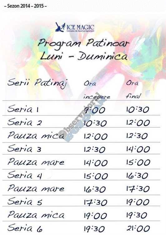 program patinaj